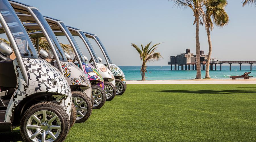 luxury buggy fleet
