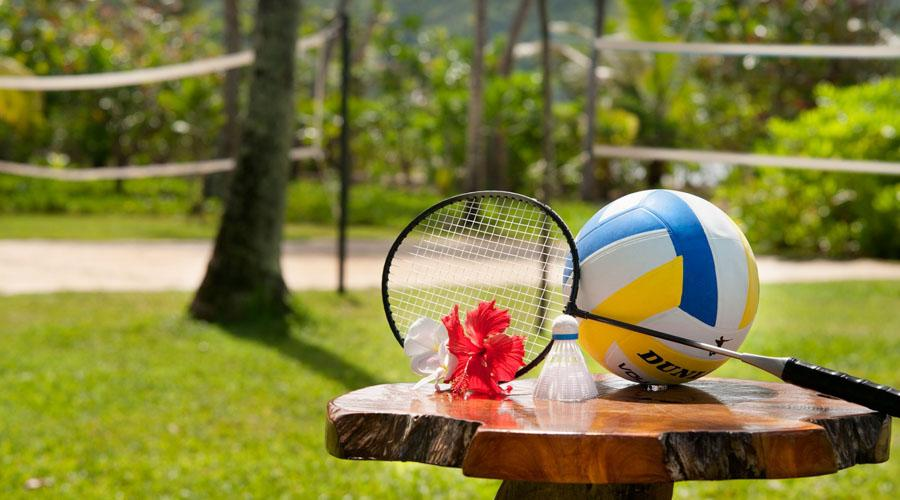 Volleyball And Badminton